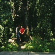 The large tree outside Steele Hall. This is the first picture of me, age 16, at Susquehanna, with a friend from home who came with my parents to pick me up from writing camp.